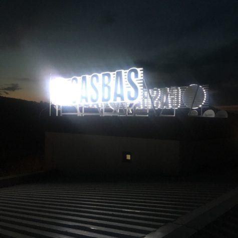 gasbaş8
