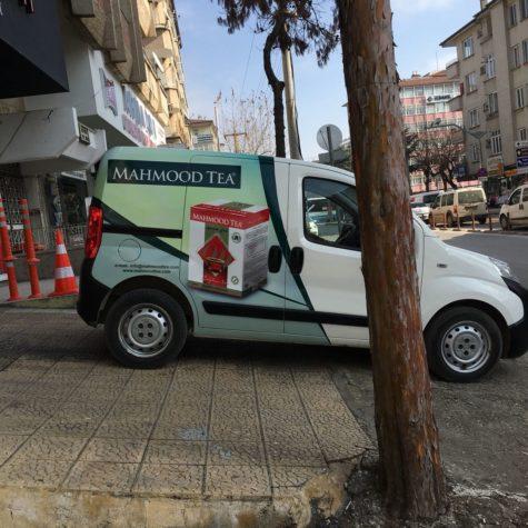 mahmood1