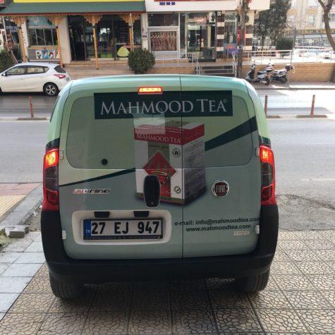 mahmood8